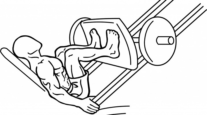Musculation the box - Musculation dessin ...